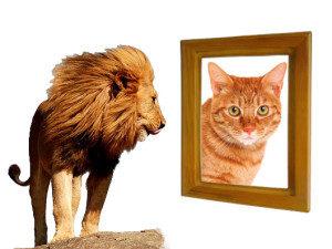 Percezione di sé e autostima